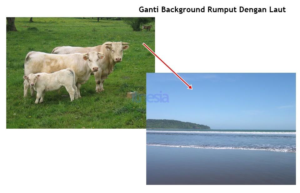 Cara Mengganti Background Foto Dengan Gambar Lain